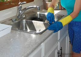 Small Flies In Kitchen Sink  Detritus - Small flies in kitchen sink