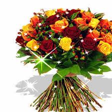 imagenes para enamorar con flores imágenes de flores con movimiento para enamorar en google flickr