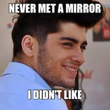 One Direction Memes - zayn and mirrors funniest one direction memes