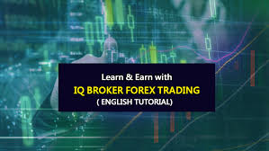 iq option tutorial italiano iq option forex broker review in china trading fx for chinese in