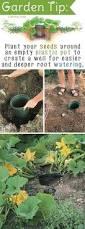 tips for maintaining a chemical free organic garden u003e u003e u003e you can