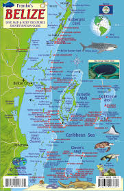 Map Of Caribbean Island by 176 Best Maps Images On Pinterest Travel Vacation Spots And