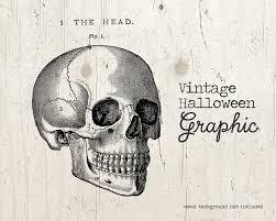 vintage halloween skeleton skull skeleton illustration vintage halloween skull clipart