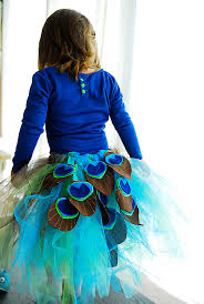 Peacock Halloween Costume Girls 14 Favorite Diy Halloween Costumes Peacock Tutu Tutu