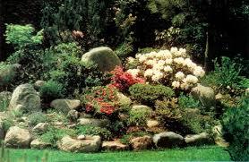 Raised Rock Garden Beds Jars V40n3 Rhododendrons And Scandinavian Design
