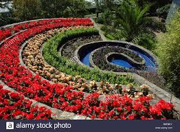 ornamental gardens at pecorama dorset stock photo royalty
