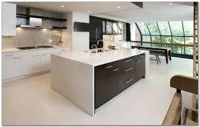 kitchen cabinets philadelphia pa cabinet home design ideas