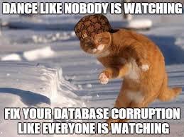 Meme Data Base - week 2 of the database corruption challenge steve stedman