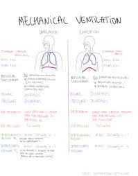 Types Of Ventilators The 25 Best Mechanical Ventilation Ideas On Pinterest Cardiac
