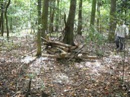 Natural Hunting Blinds Homemade Deer Hunting Ground Blind Deer Hunting Homemade And