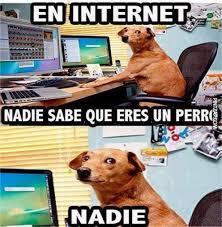 Memes De Internet - memes de perros memes humor and meme