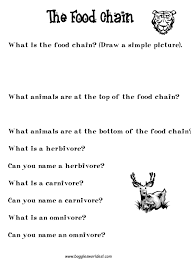 food chain and food web worksheet worksheets releaseboard free