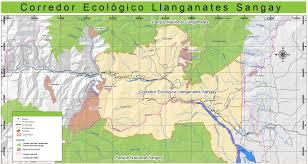 Hummingbird Migration Map Bird Populations Of Cerro Candelaria Reserve A Comparative Study