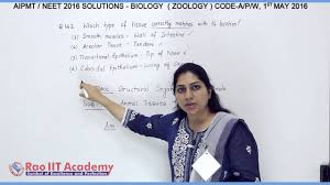 aipmt neet phase i 2016 video solutions 1st may code a biology q
