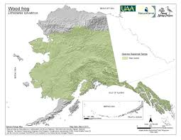 Gulf Of Alaska Map by Amphibian Database Alaska Center For Conservation Science