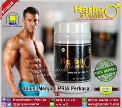 obat kuat stamina herbal google