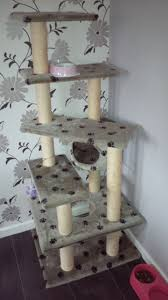 Large Cat Scratching Post 5ft Cat Scratch Post Only 15 Pound Good Condition Tamworth