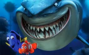 finding nemo photographer snaps shark bruce ew