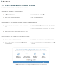 the absorption of light by photosynthetic pigments worksheet answers quiz worksheet photosynthesis process study com
