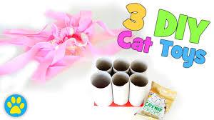 3 simple diy cat toys