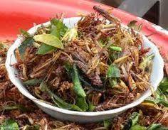 insectes cuisine résultat de recherche d images pour insectes comestibles