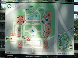 Met Museum Map Central Park Zoo Map Zoochat