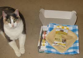 a review of evo dry cat food review of 3 flavors of merrick purrfect bistro cat food varieties