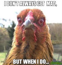 Dont Be Mad Meme - i don t always get mad but when i do meme rage chicken 3109