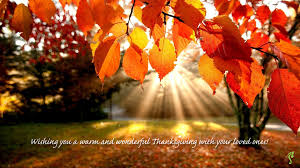 wishing you a happy thanksgiving everlasting footprint archives everlasting footprint official blog