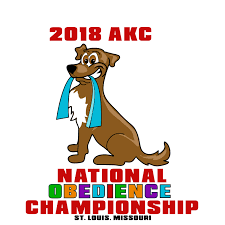 belgian sheepdog national specialty akc national obedience championship american kennel club