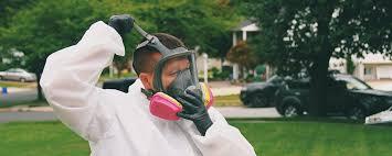 basement mold removal ohio professional guaranteed