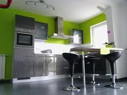 cuisine verte pomme cuisine vert anis cuisine gris et vert deco dacco anis verte