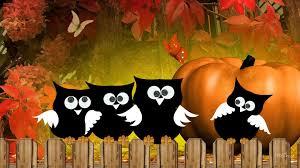 fall pumpkin wallpaper hd autumn mouse treasures hd desktop wallpaper widescreen high