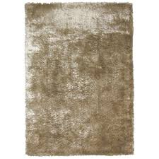 Outdoor Area Rugs Home Depot Cool Area Rugs At Home Depot On Home Decorators Indoor Outdoor
