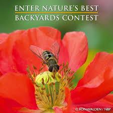nature u0027s best backyard photo contest u2013 reno photo club