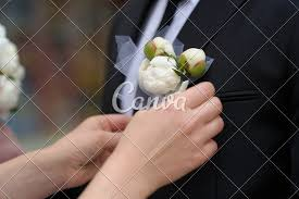 groom s boutonniere adjusting groom s boutonniere photos by canva