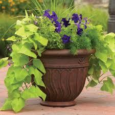 lawn garden white ceramic indoor planter large ceramic floor