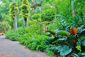Florida Backyard Landscaping Ideas by Best Landscape Design In Miami South Florida