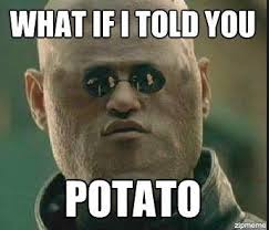 Funny Sorry Memes - potato matrix potato pinterest potato funny