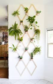 Hanging Wall Planters Awesome Hanging Wall Planters Twuzzer