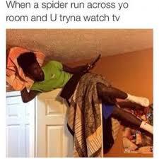 Afraid Of Spiders Meme - scared of spider jokes kappit