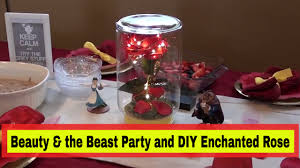 beauty and the beast premier party u0026 diy enchanted rose youtube