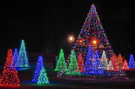 christmas light festival near me christmas trees image digital journal
