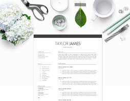 Best Resume To Use by 4 Resume Styles That Always Land The Job Plus Tips To Learn When
