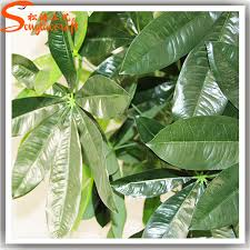 cheap artificial trees recycle tropical ornamental ficus plants