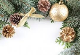 Decoration Christmas Png by Christmas Decorations Twig Needles Bumps Bow Knot New Year Preview