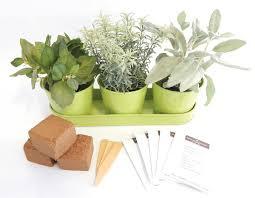 metal herb garden kit round garden gifts urban farmer seeds