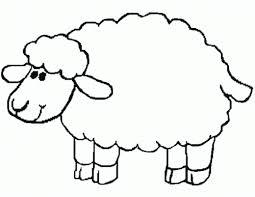 white wool der gute hirte christian bulletin