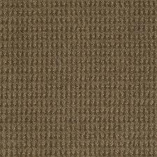 shop stainmaster active family st john safari vest carpet sample