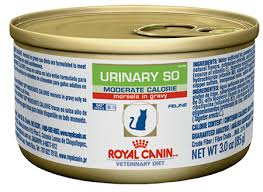 royal canin moderate calorie urinary so mig canned cat food
